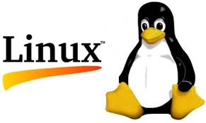 Advantages of Linux Web Hosting Server